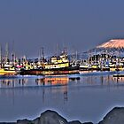 Sitka Harbor & Mt. Edgecombe by scarlett131