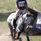 Berrima Horse Trials # 215_01 by Samantha Bailey