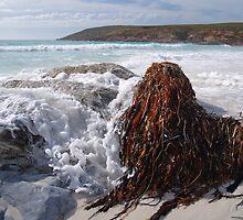 point ann, western australia by col hellmuth
