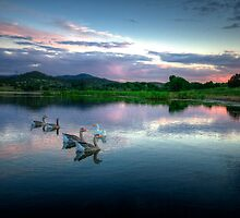Sunset Ducks by Bob Larson