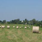 Round Hay Bales by Suoz