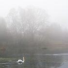 Airthrey Loch, Scotland by Michael Marten