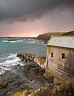 Lizard point by igotmeacanon