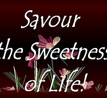 Savour the Sweetness of Life! by Dayonda