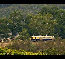 The Yarra Valley Railway by Jonathan Newton