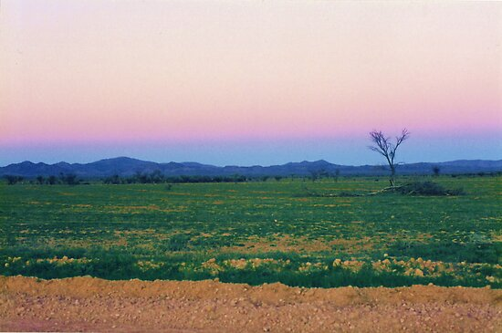 Dusk Hues over the Flinders Ranges by Michael John