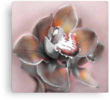 Frannie Moore in Orchid Canvas Print