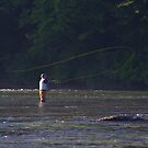 TROUT FISHERMAN IN RIVER CASTING FLY  by Wayne Hughes