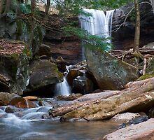 Cucumber Falls by LeeAnne Emrick