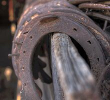 Horse Shoes by Jay Stockhaus