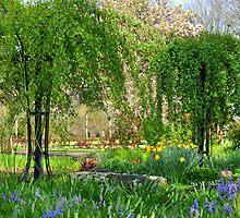 Hello, Spring by scenebyawoman
