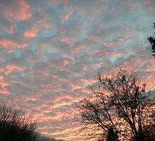 Cotton Candy Clouds by linmarie