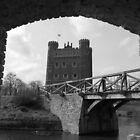 Tattershall in  Frame by Mark Baldwyn