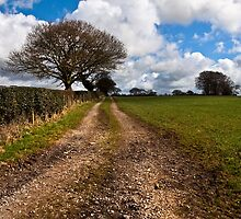 Farmers track near the river brock by Shaun Whiteman