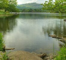 Rydal Water in June by Jamie  Green