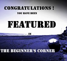 Challenge Banner Beginner's Corner by Berns