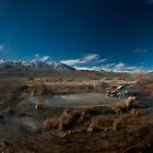 Fly Geysers. Black rock desert. by garyfoto