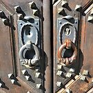 Elements of an old door by bubblehex08