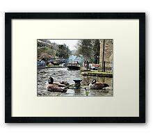 Rochdale canal  Framed Print