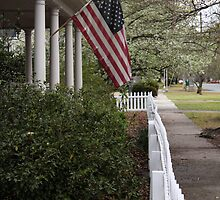 White Picket Fence by Michael McCasland