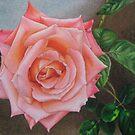 Satin pink rose by lanadi
