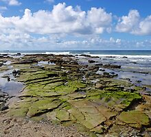 rugged coast line , sunshine coast by ronlan