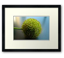 spike pod Framed Print