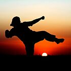 Sunset martial arts by Johan Larson