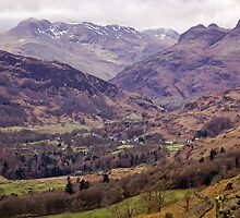 Lakeland View by Lynne Morris