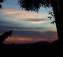 Colours Of The Morning by Evita