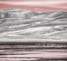Great Sand Dunes NP, Colorado in Pink  by pixsellchix1