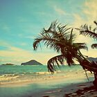 Palm Tree by the Beach. St Lucia. Vintage Retouch by yiuphotography