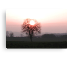 Sun in the crown Canvas Print