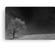 You'll Come Apart and You'll Go Black Canvas Print