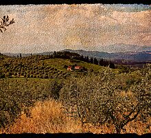 Memories of Tuscany 1 of 2 by RodneyCleasby