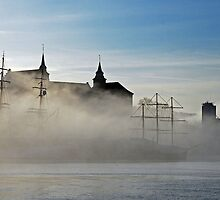 Misty morning in oslo by julie08