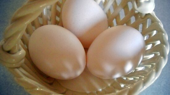 Eggs in The Basket by Debbie Meyers