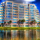 Office Reflections by robert cabrera