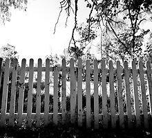 Picket Fence by Michael Jeffery