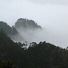 Huang Shan Mists by L- M-K