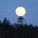 Månen  Der Mond  The Moon  La Lune   by HELUA