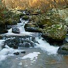 Gilpin Falls, MD by Jeff Palm Photography