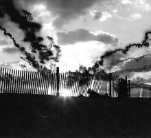 Sun Rays by Michael Damanski