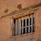 Remnants of the Past #2 - Old Mesilla, New Mexico by Vicki Pelham
