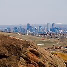 Denver Skyline by Kasey Cline