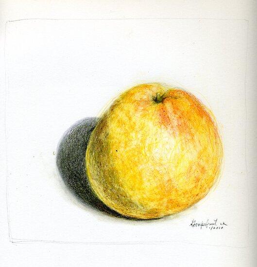 Grapefruit by Lois Keller