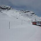 Bernina Express by annalisa bianchetti
