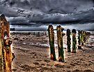 Sands End Landscape by Paul Thompson Photography