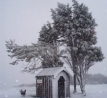 Hut in the snow on golf course by BeckyMP