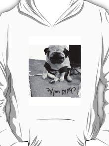 i gotsa chilly willie T-Shirt